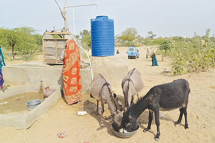 A solar-powered well in Bolri Bheel has changed the lives of  its residents
