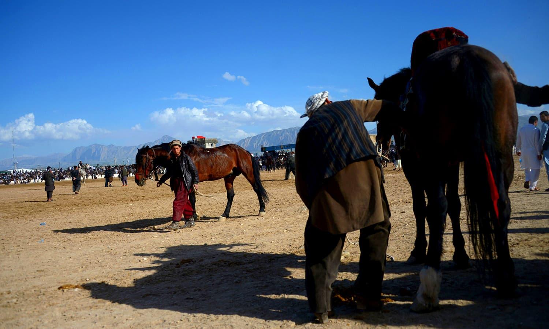 Horsemen clean and groom horses. ─ AFP