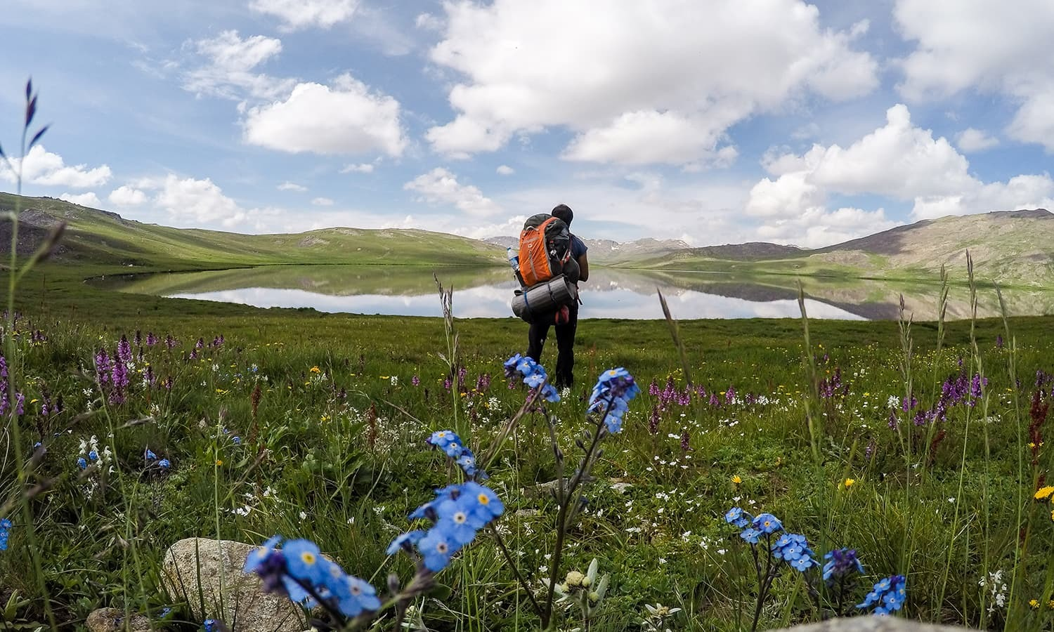 My search for the elusive 'giant' of Deosai