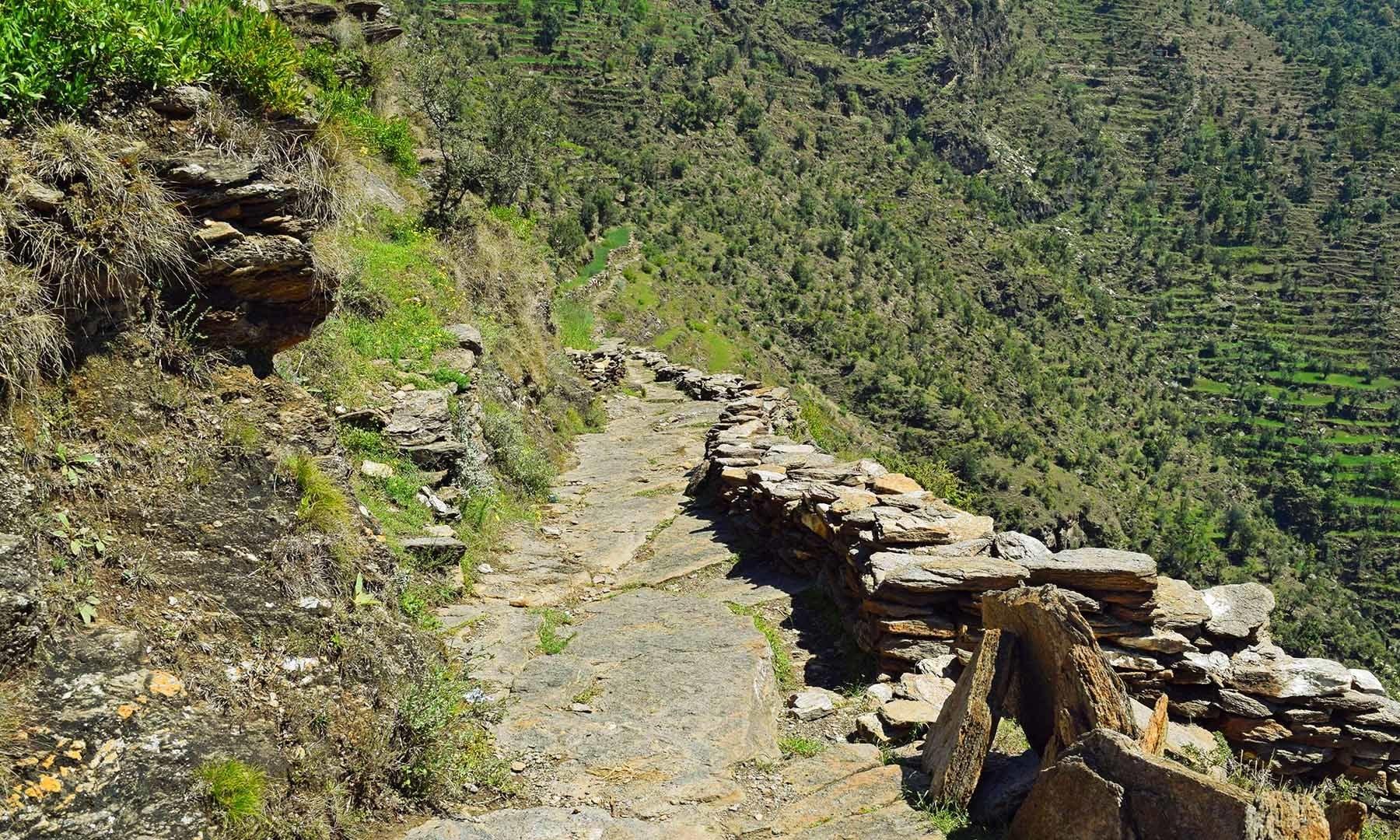 شنگرئی آبشار تک جانے والا راستہ جو ہائیکنگ کے لیے موزوں ہے۔— فوٹو امجد علی سحاب
