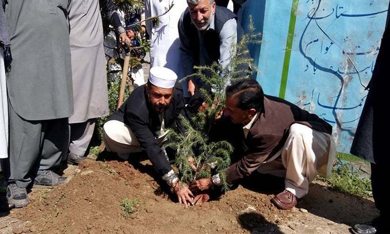 Ecologists denounce PTI one billion tree campaign in KP