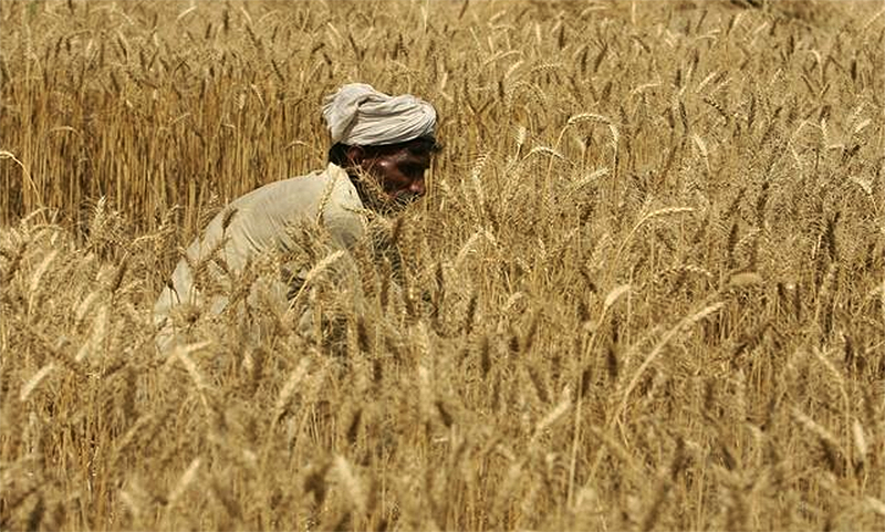 HRW urges Pakistan to stop use of force on Okara farmers