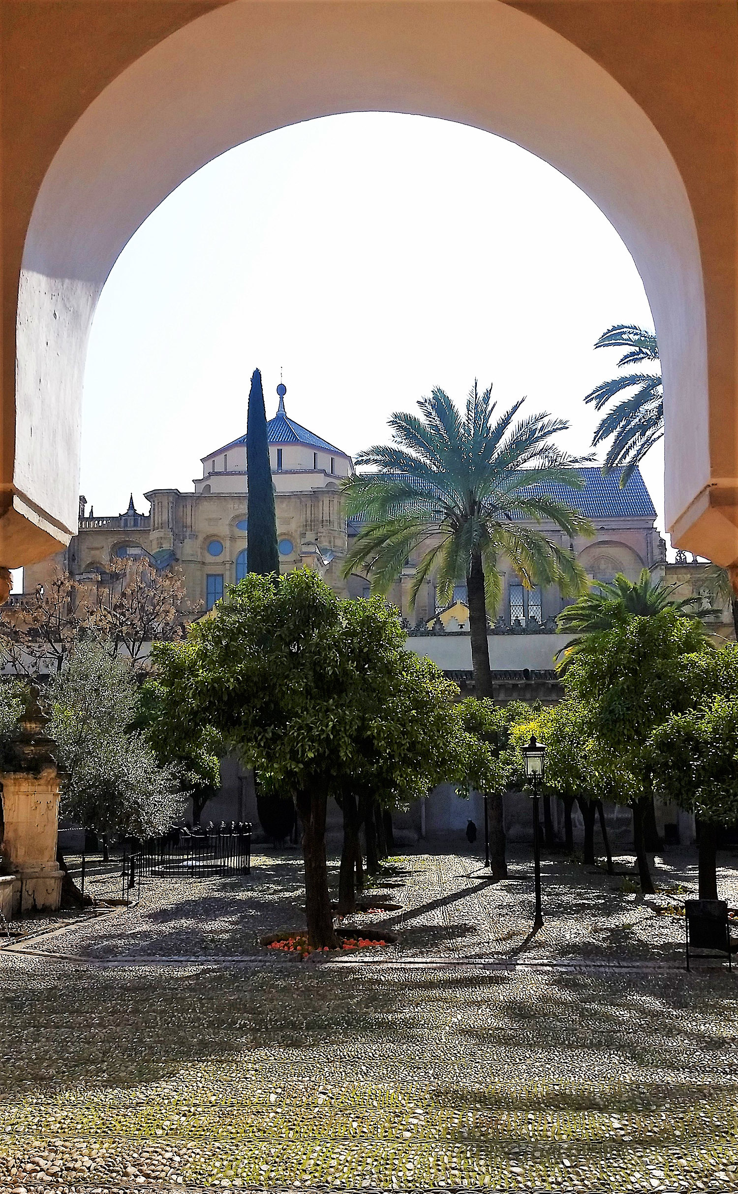 View of the cathedral-mosque from the side of the orchards.