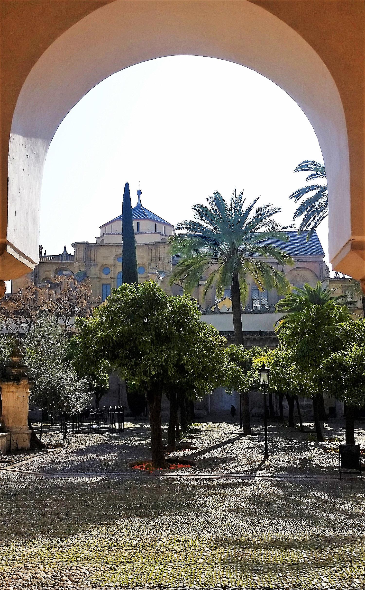 مسجد کے باغ سے ایک منظر.— تصویر بشکریہ لکھاری