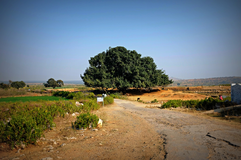 Fortunately, the road to Kusak is breathtaking.