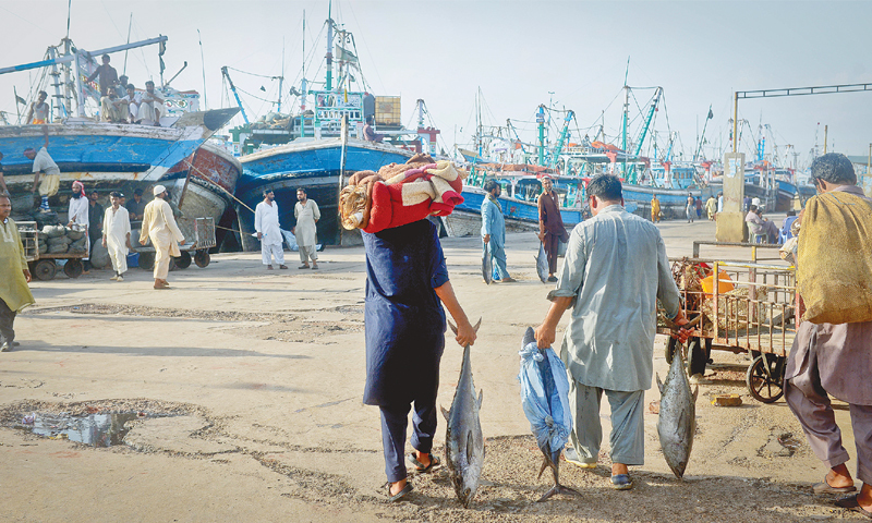 Fishermen anchor their boats at the fish harbour and pack up their belongings to head home with the last of their catch.—Fahim Siddiqi / White Star