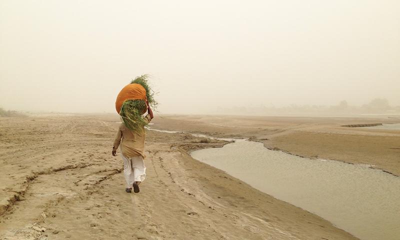 ستلج ندی کے کنارے ایک شخص پیدل جا رہا ہے۔ وہ تصویر جو مجھے ڈیلیٹ کرنی نہیں پڑی — تصویر فہد نوید، ہیرالڈ