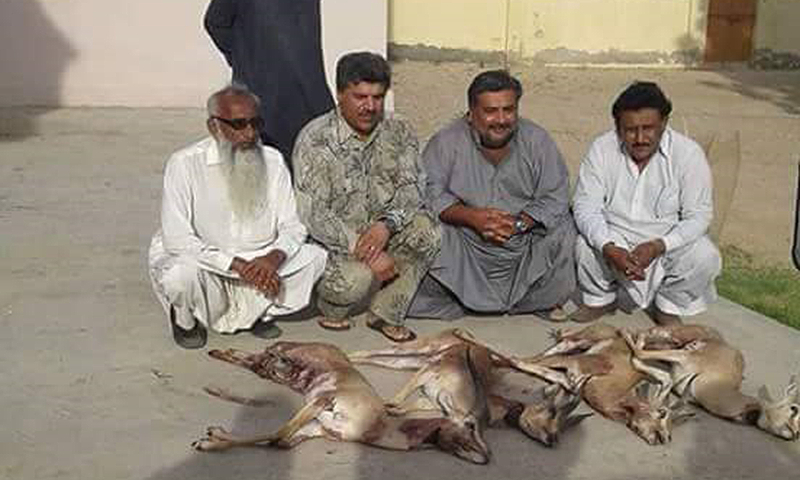 PPP lawmakers settle out of court in illegal hunting of rare deer