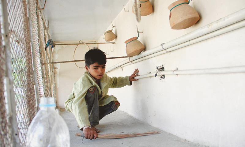 Snapshots of children at work -Photo by Fahim Siddiqi/White Star