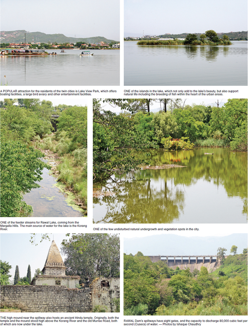 Rawal Dam — where nature thrives