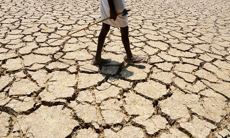 This file photograph shows an Indian farmer posing in his dried up cotton field at Chandampet Mandal in Nalgonda east of Hyderabad, in the southern Indian state of Telangana.— AFP