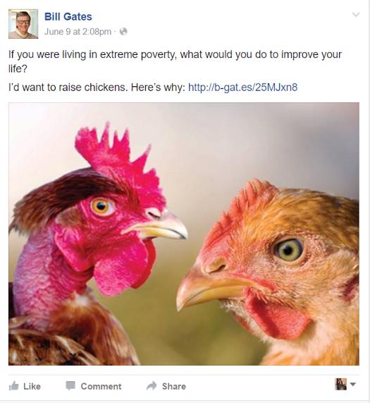 ''اگر آپ انتہائی غربت کا شکار ہوتے تو اپنی زندگی بہتر کرنے کے لیے کیا کرتے؟ اگر میں ہوتا تو مرغیاں پالتا'' — بل گیٹس فیس بک پیج