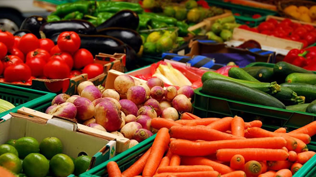 Two out of every three households cannot afford a healthy diet: report