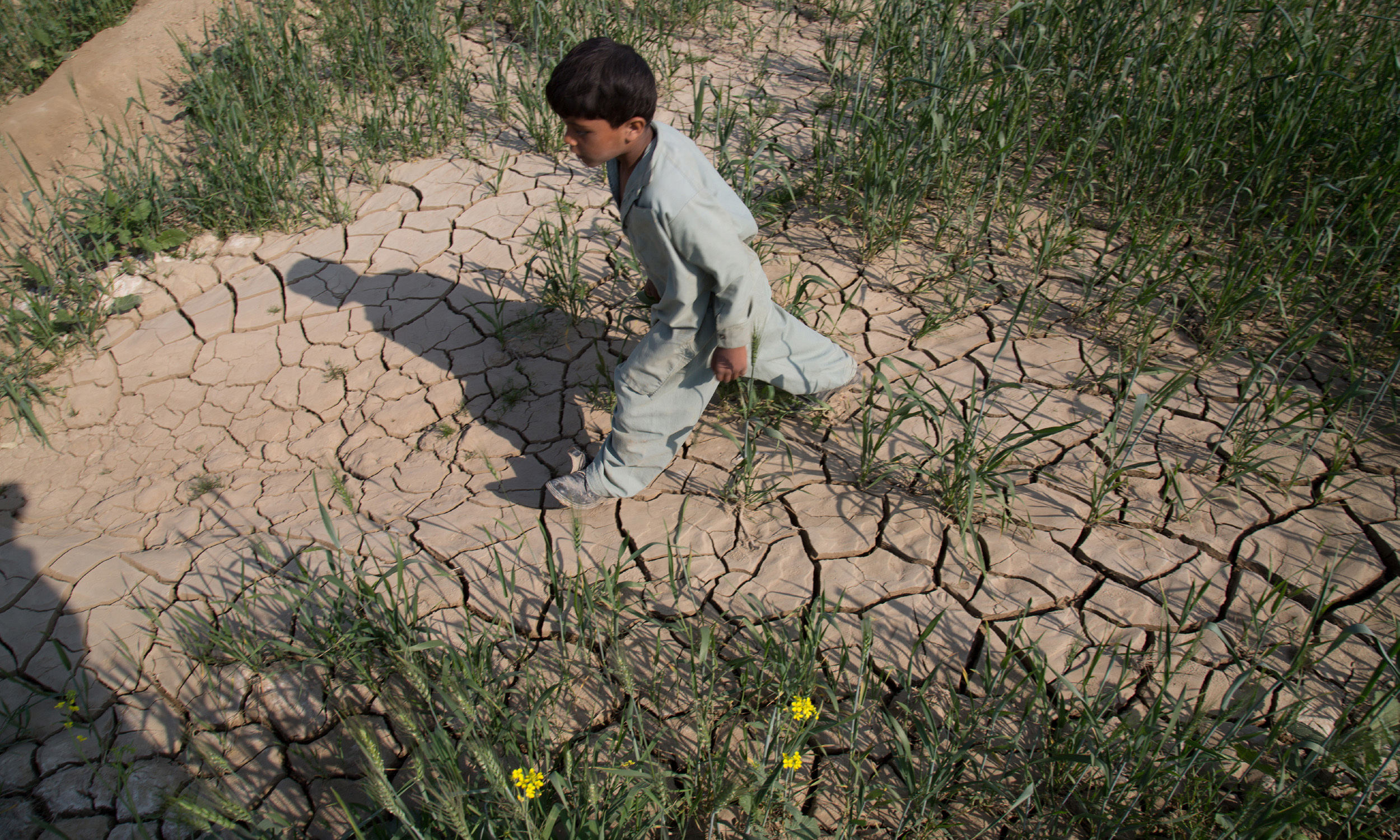 A boy walks in a field destroyed by a flood  in Samti village, Muzaffargarh district