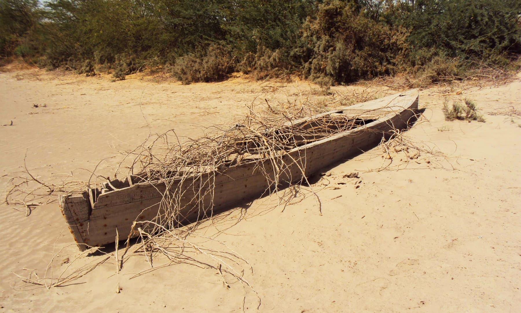 انڈس ڈیلٹا پر موجود علاقے جہاں پہلے کبھی بے پناہ پانی تھا اور زمین سر سبز و شاداب تھی— تصویر ابوبکر شیخ