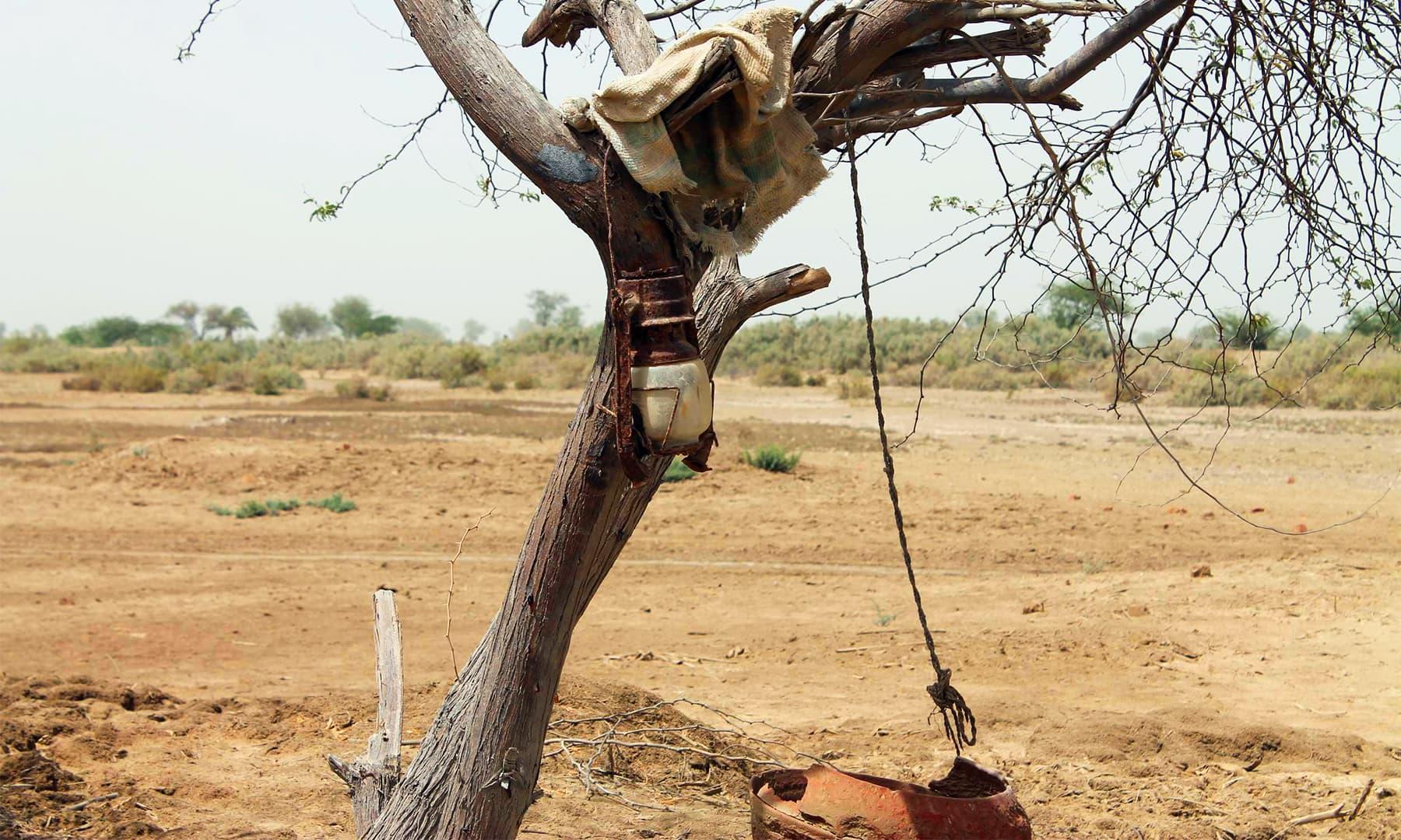 ڈیلٹا کی ویران بستیاں — تصویر ابوبکر شیخ