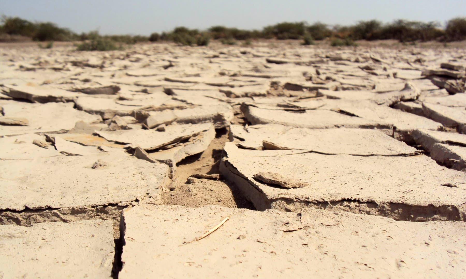 شاندار ماضی کا حامل ڈیلٹا آج بنجر زمین — تصویر ابوبکر شیخ