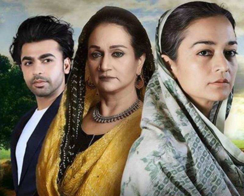 Bushra Ansari plays the role of a lifetime as Udaari's Sheedan