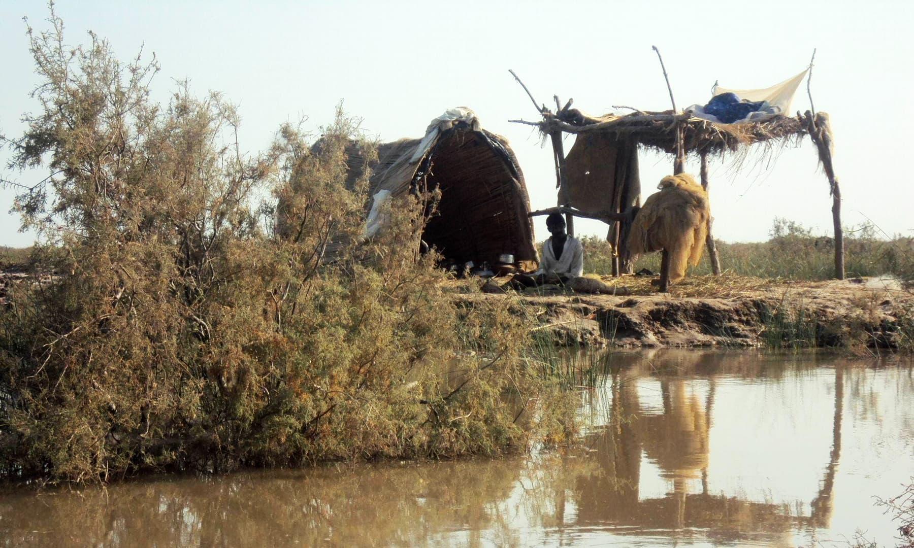 جھبو جھیل پہلے۔  — تصویر ابوبکر شیخ