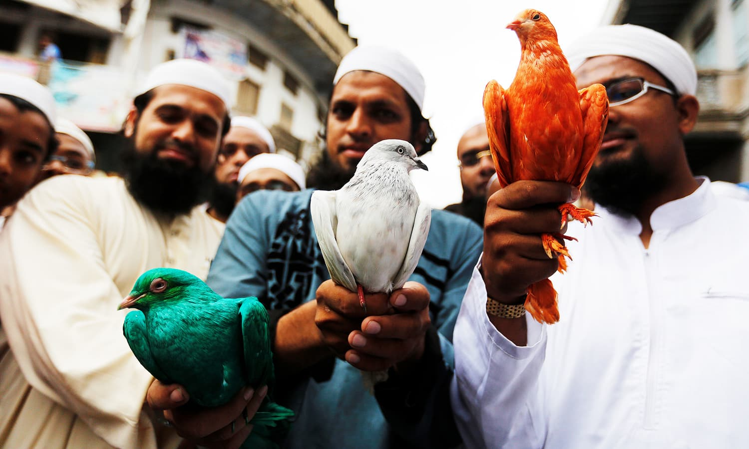 Muslims hold pigeons during a march to celebrate India's Independence Day in Ahmedabad, India, 2016. ─ Reuters