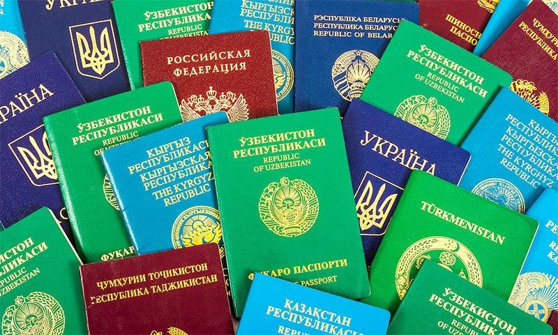 پاسپورٹس کے رنگ کیا بتاتے ہیں؟