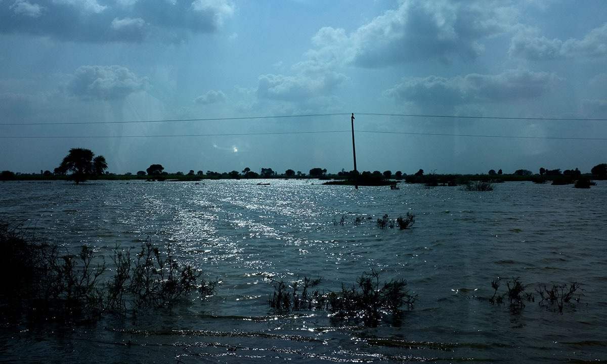 Flooding in Tando Allahyar, Sindh |Arif Mahmood, White Star