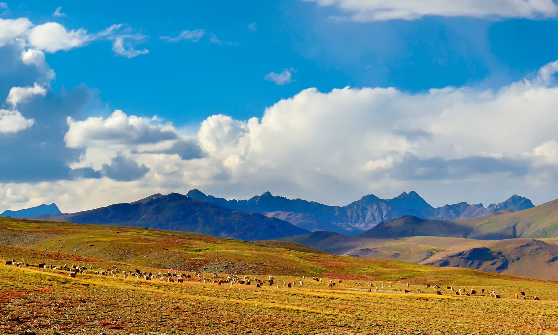 The plains of Deosai in the distance.