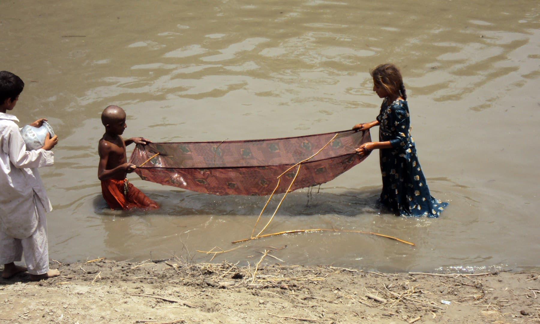 مچھلی کے بیجوں کو نہر میں ہی پکڑ لیا جاتا ہے — تصویر ابوبکر شیخ