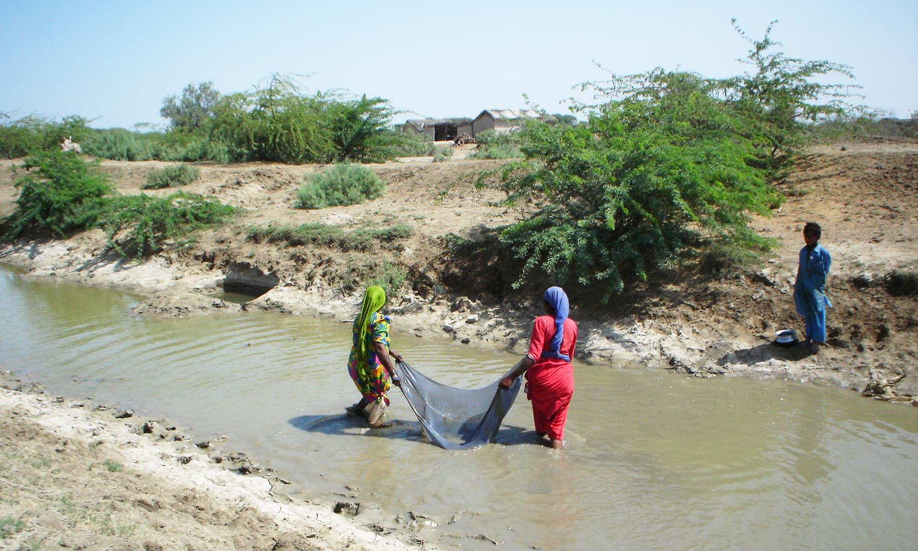 انڈس ڈیلٹا سے قریبی علاقوں میں موجود نہریں — تصویر ابوبکر شیخ
