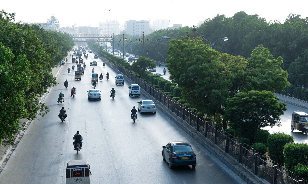 Corynocarpus trees line Shahrae Faisal, one of Karachi's main thoroughfares
