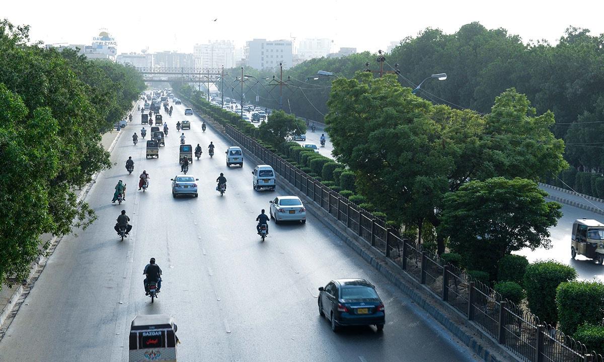 Corynocarpus trees line Shahrae Faisal, one of Karachi's main thoroughfares