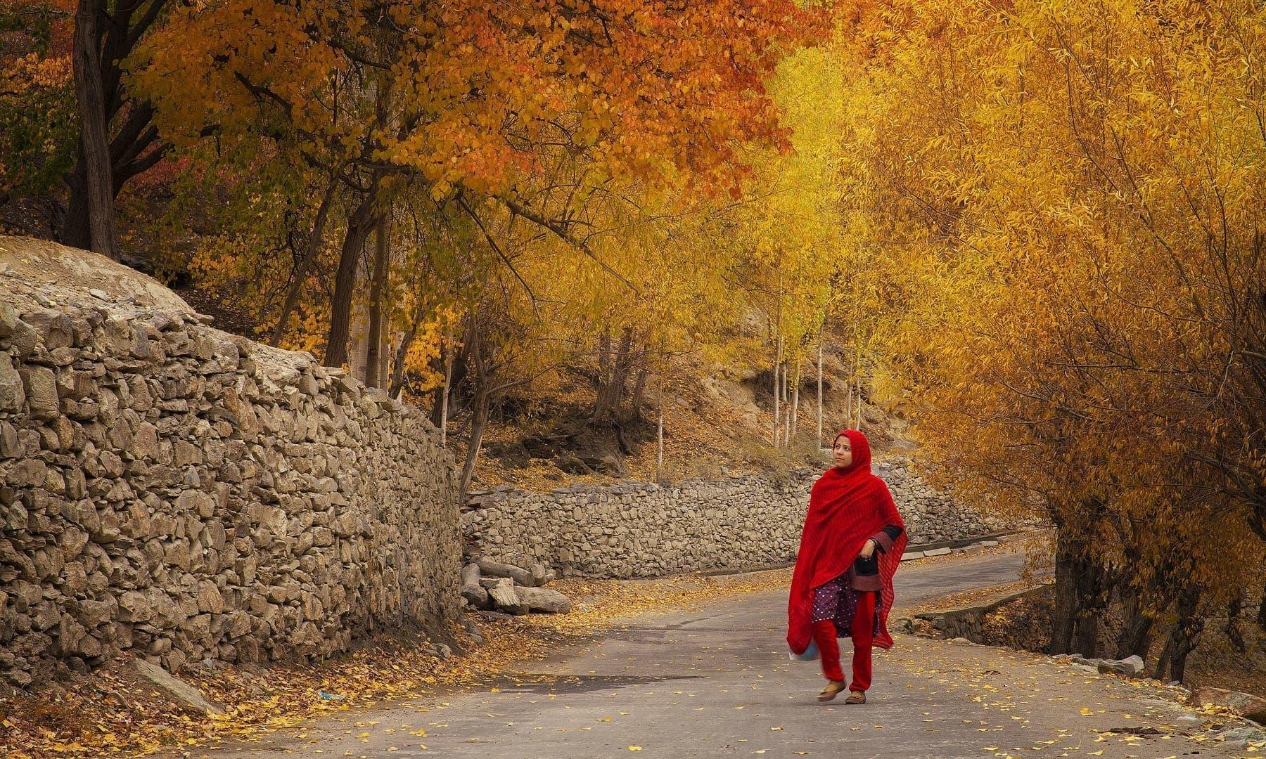 فوٹو بشکریہ سید مہدی بخاری