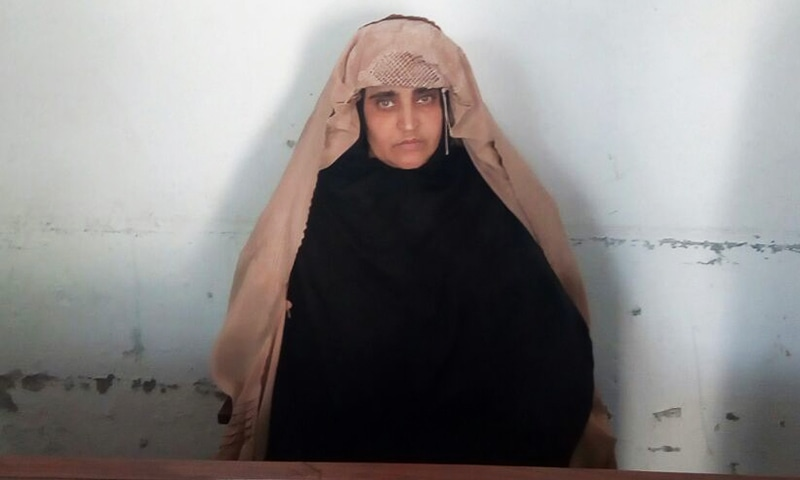Sharbat Bibi in custody of FIA Peshawar.— FIA handout