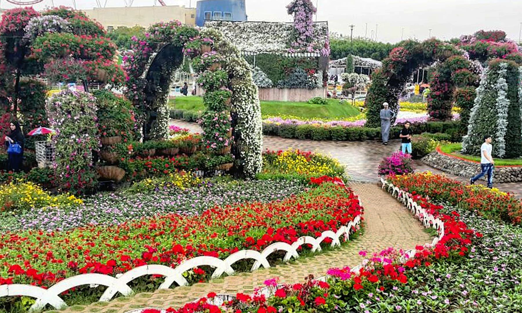 معجزہ باغ دبئی — تصویر صوفیہ کاشف