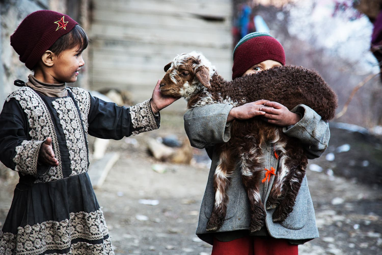 Children play with a lamb