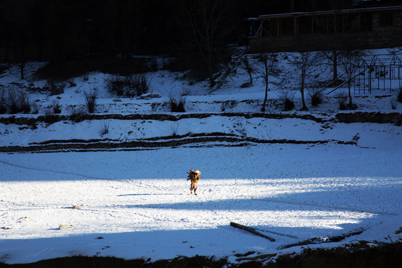 علاقے میں برفباری کا خوبصورت منظر