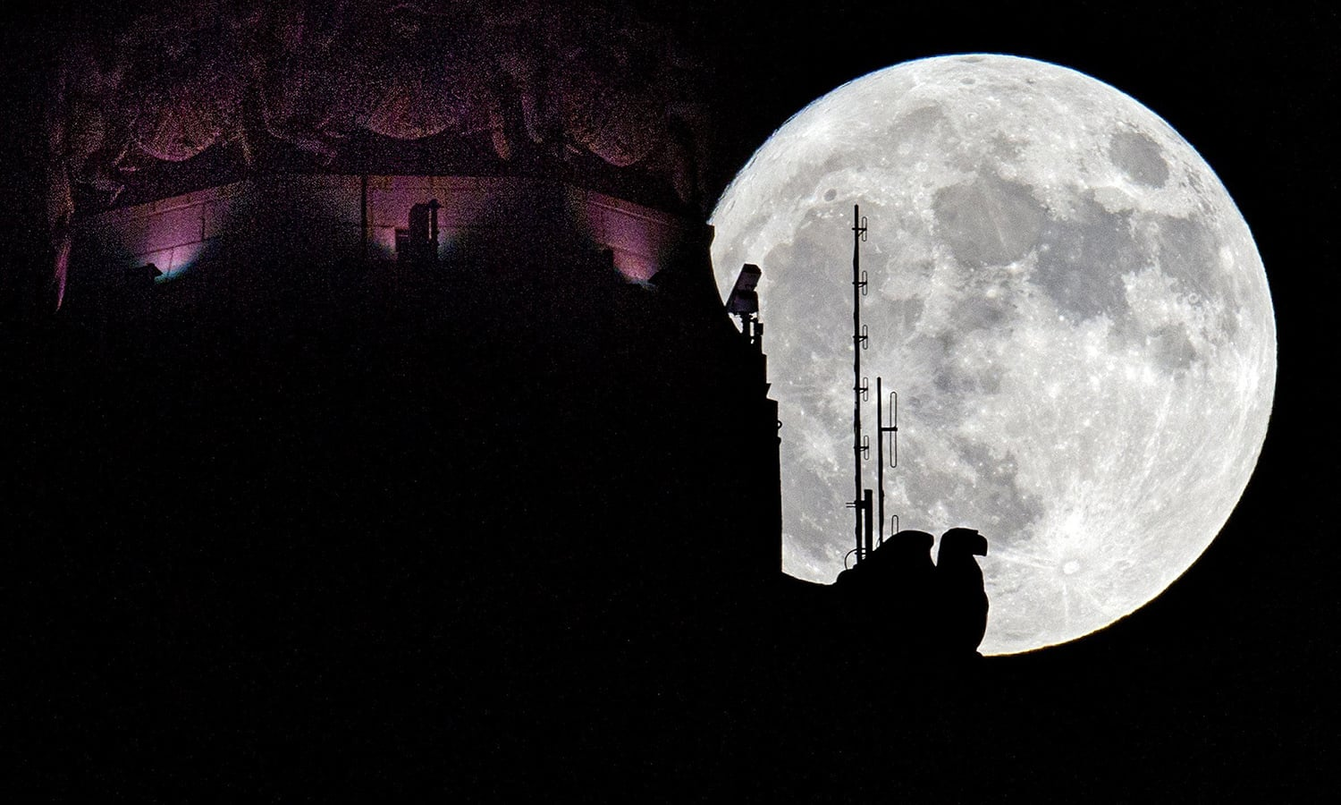 The moon rises behind the eagle sculpture high atop LeVeque Tower in Columbus, Ohio. ─AP