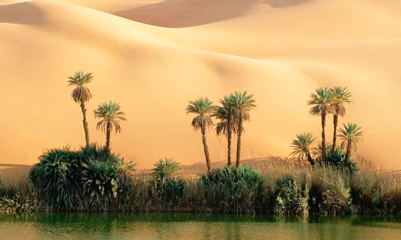 An oasis in Sindh's Thar Desert. (Pic: PakWather)