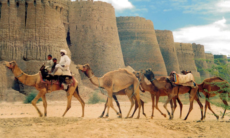 An ancient fort in Punjab's Cholistan Desert. (Pic: Quratullah)