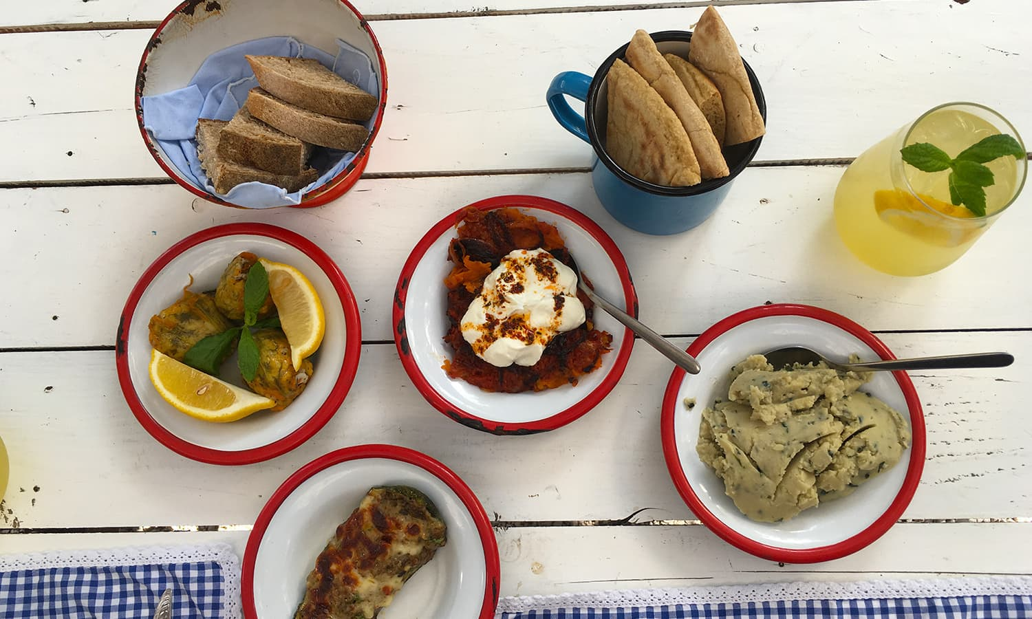 Enjoying traditional Turkish mezze at Asma Yaprağı.
