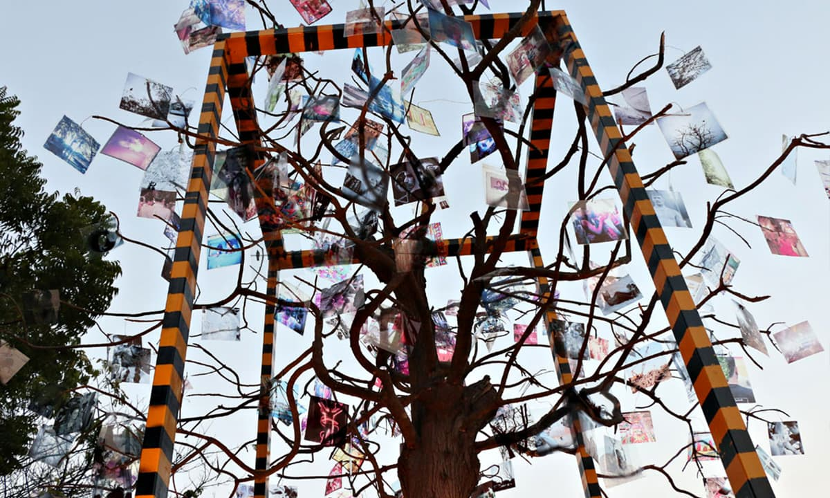 Karachi-based artists contributed to an installation in Napa   Dawn.com