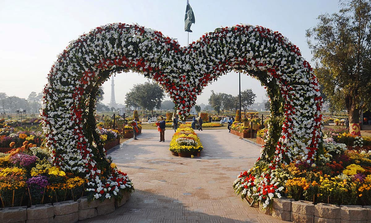 Flowers seen displayed during inauguration ceremony of flowers exhibition at Greater Iqbal Park. —Online