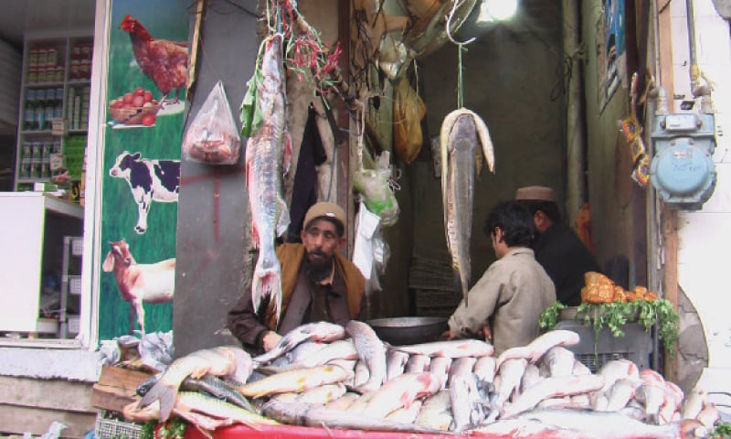Rohu fish attracting buyers in Kohat - Newspaper - DAWN COM
