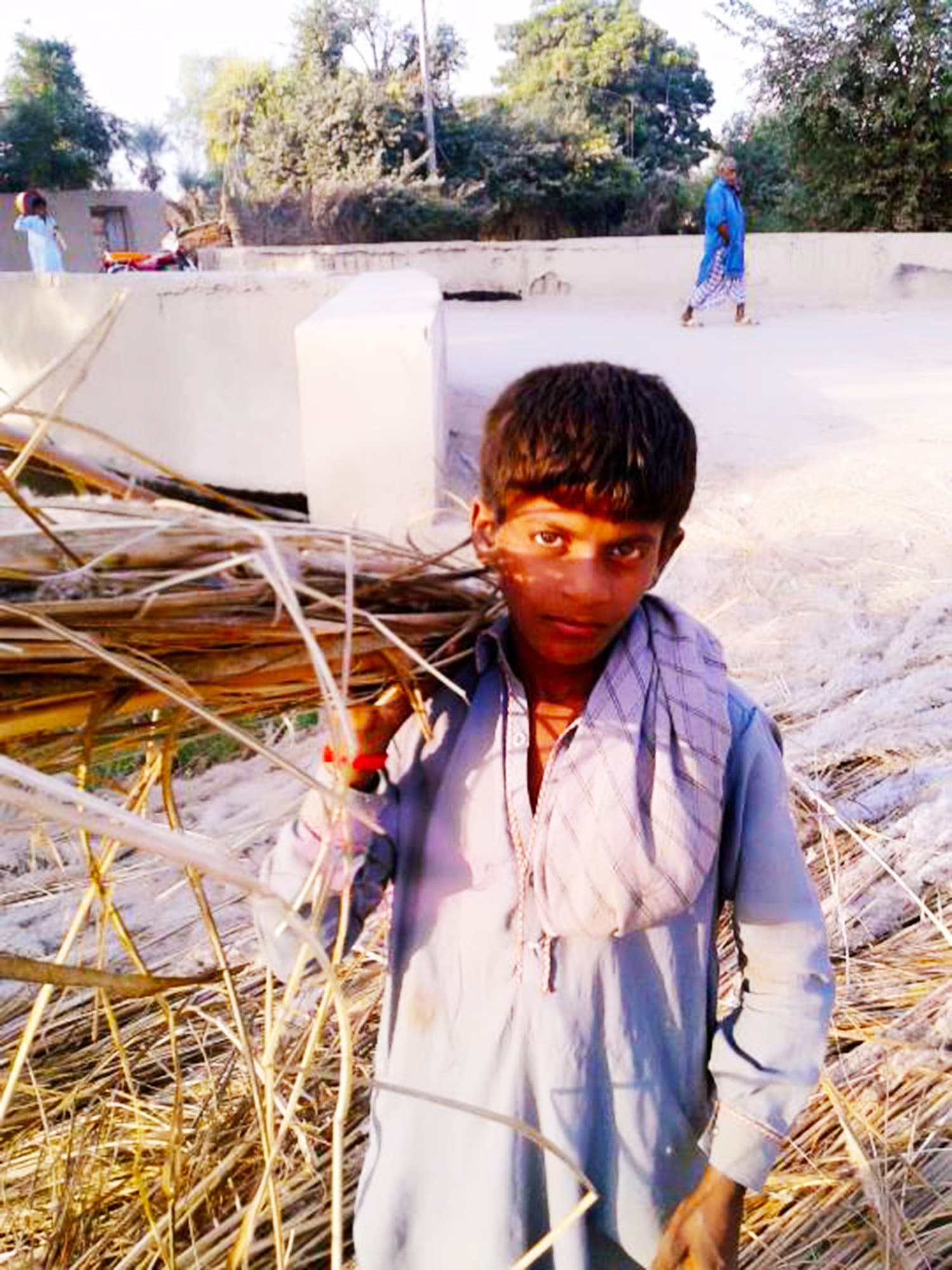 A young boy collects natural supplies to make chairs from the fields.