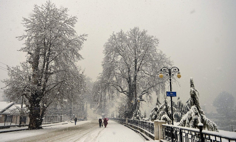 برف کی چمکیلی چادر اوڑھے درختوں نے وادی کا حسن کئی گنا اضافہ کر دیا—فوٹو: اے ایف پی