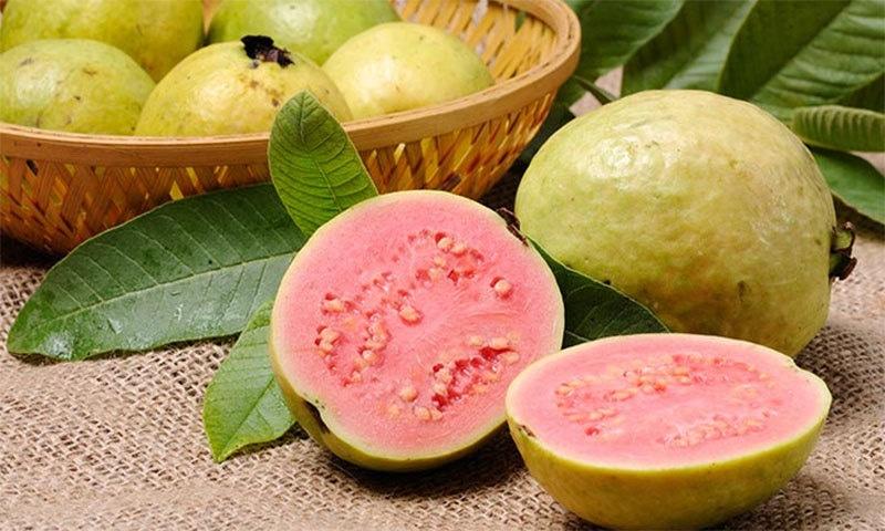 میٹھے امرود کی شناخت بہت آسان