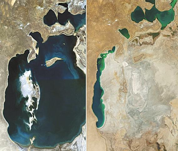 1989 & 2014