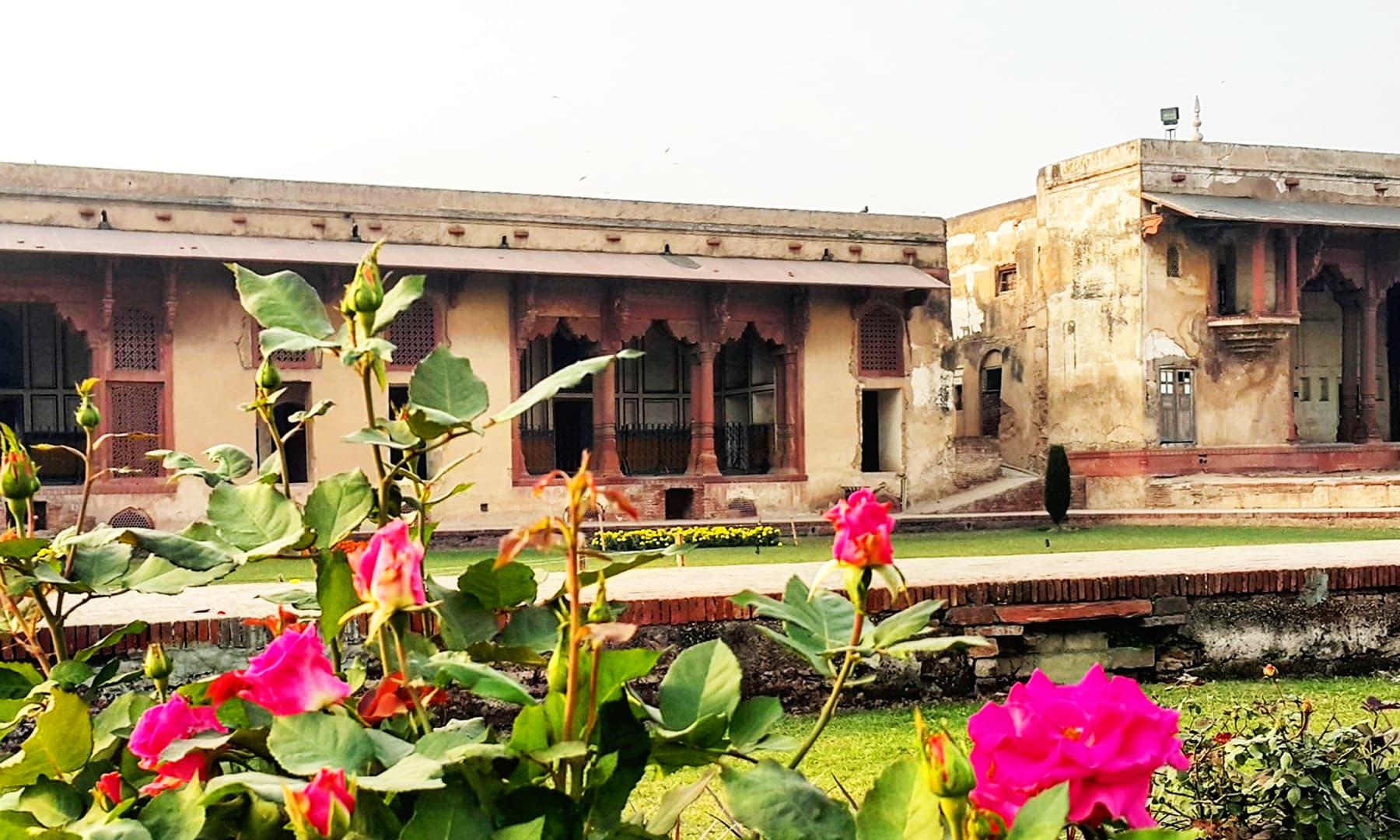 لاہور کی سیر — تصویر صوفیہ کاشف