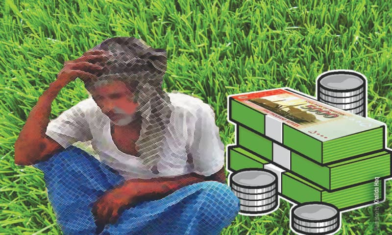 Kissan Package: identifying eligible small farmers