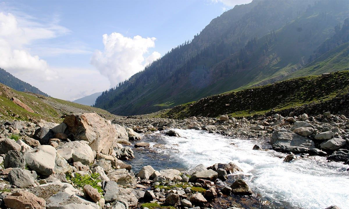 A small Eden: The wellspring of life's permanence in Kashmir